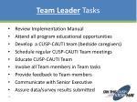 team leader tasks