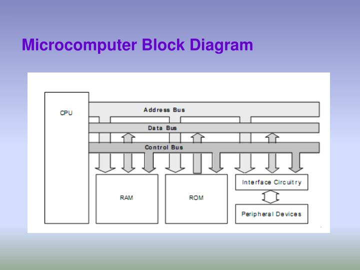 Ppt - Microprocessor And Assembly Language Powerpoint Presentation