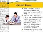 custody issues