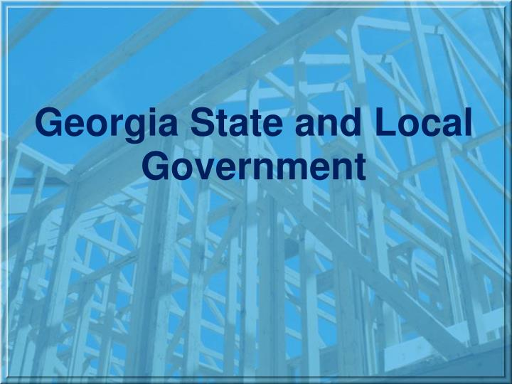 georgia state and local government n.