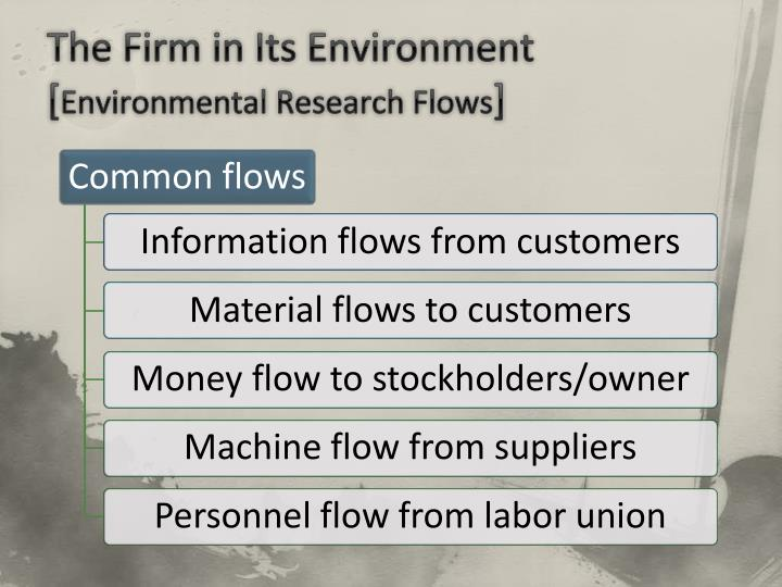 The Firm in Its Environment