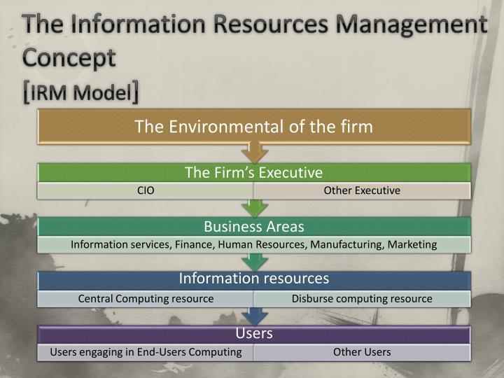 The Information Resources Management Concept