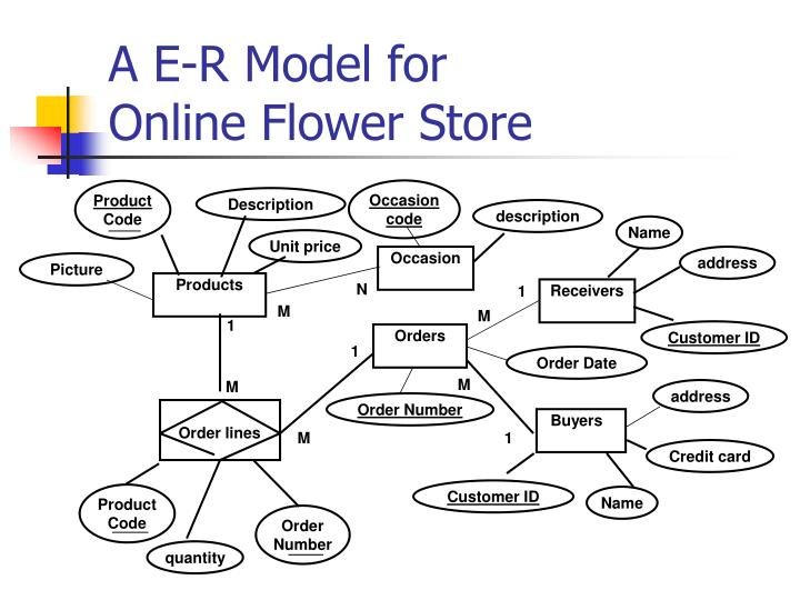 a e-r model for online flower store - powerpoint ppt presentation