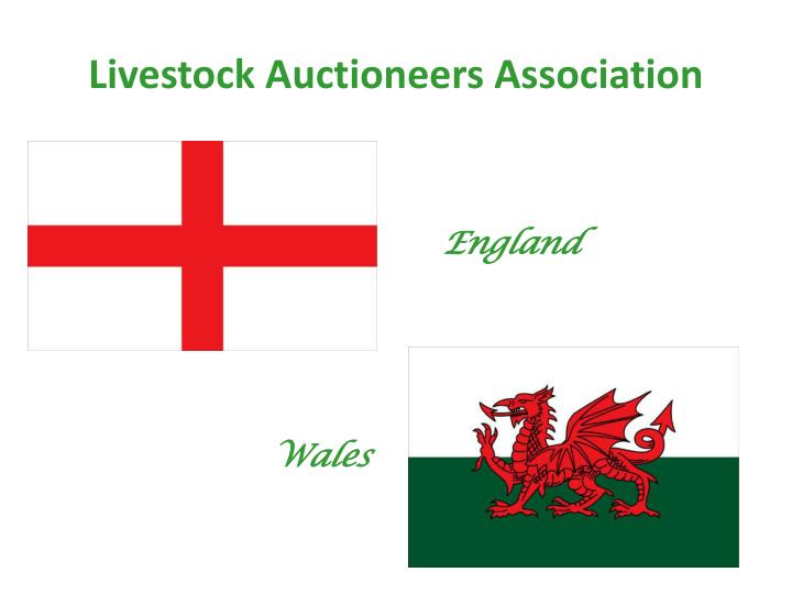 Livestock auctioneers association