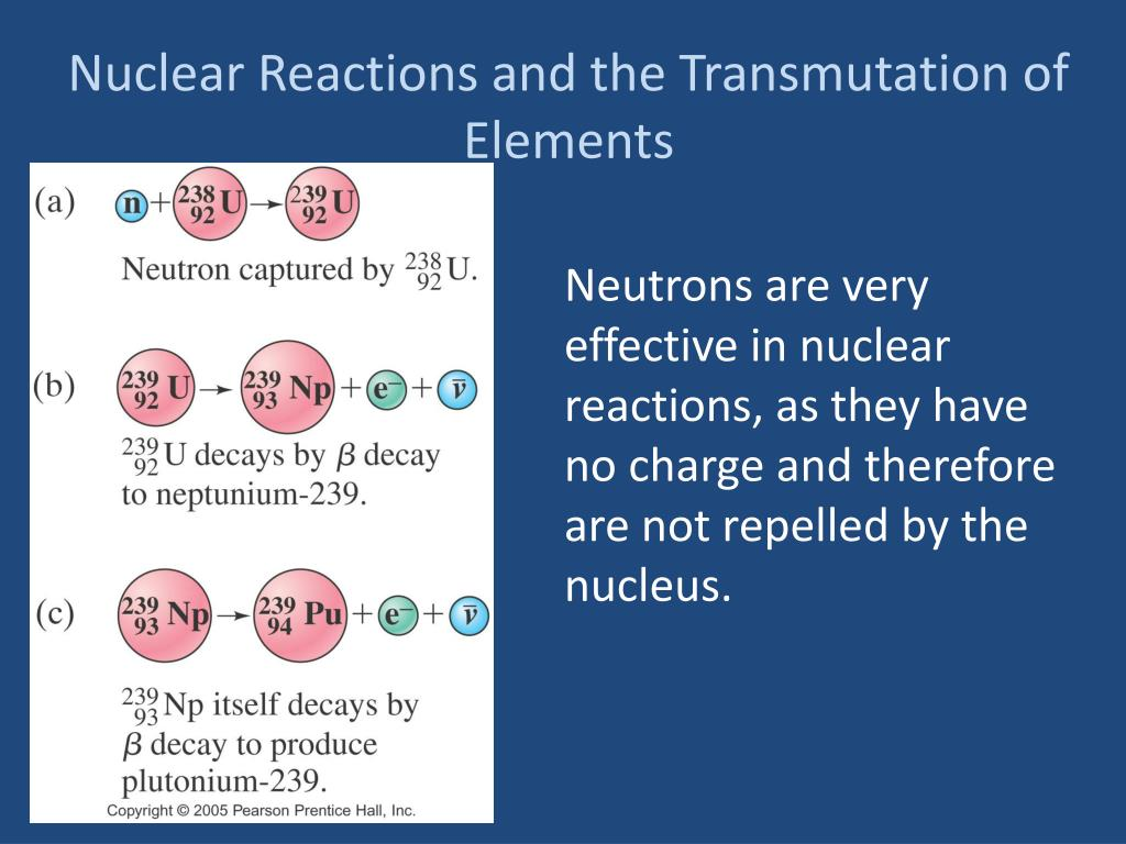 PPT - Nuclear Reactions and the Transmutation of Elements PowerPoint  Presentation - ID:2916086