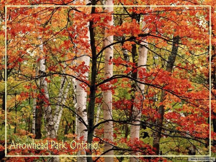 Arrowhead Park, Ontario