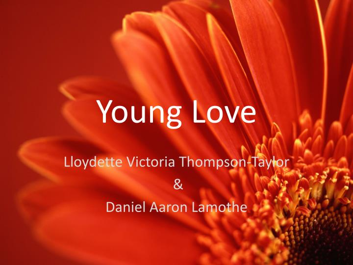 young love n.