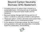 beyond carbon neutrality biomass ghg abatement