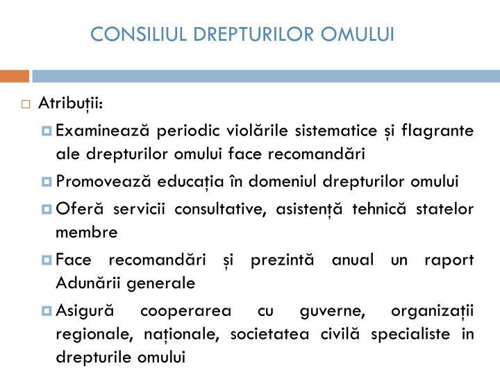 CONSILIUL DREPTURILOR OMULUI