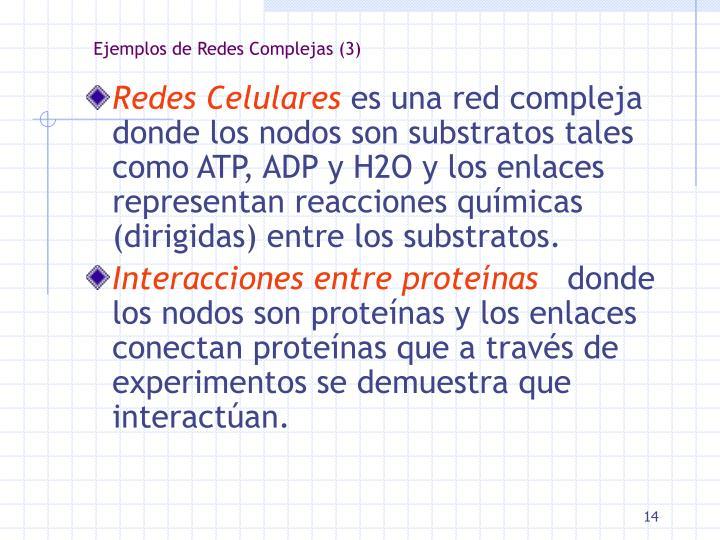 Ejemplos de Redes Complejas (3)