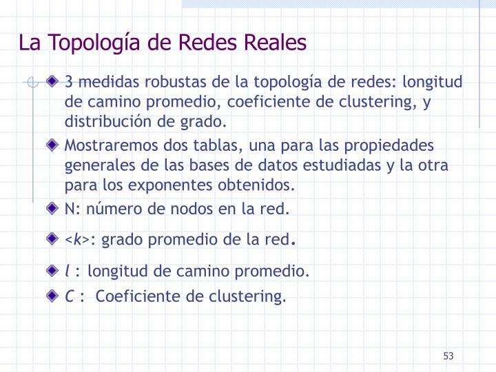 La Topología de Redes Reales