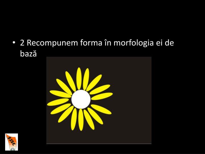 2 Recompunem forma în morfologia ei de bază
