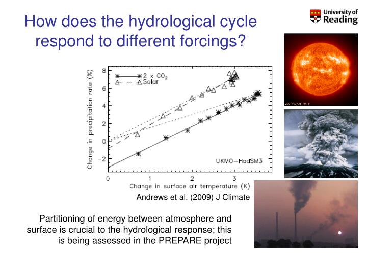 How does the hydrological cycle respond to different forcings?