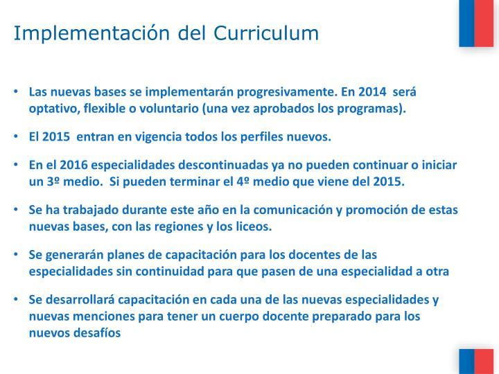 Implementación del Curriculum