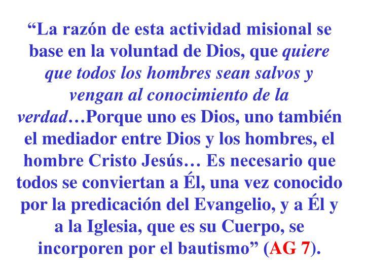 """""""La razón de esta actividad misional se base en la voluntad de Dios, que"""
