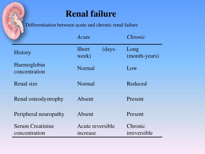 renal failure essays Acute renal failure - acute renal failure, also known as acute kidney injury is described to be a rapid loss of kidney function, or a rapid decline in renal filtration function the first.