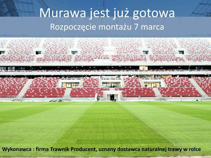 Murawa jest już gotowa