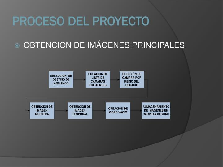 PROCESO DEL PROYECTO
