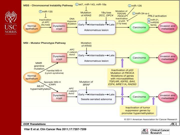Vilar E et al. Clin Cancer Res 2011;17:7207-7209