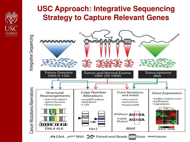 USC Approach: Integrative Sequencing Strategy to Capture Relevant Genes