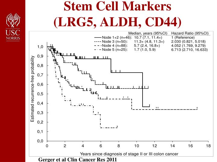 Stem Cell Markers