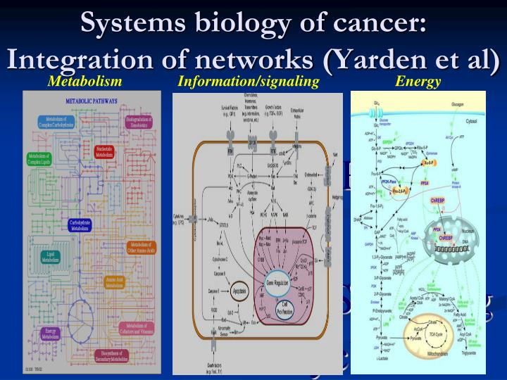 Systems biology of cancer: