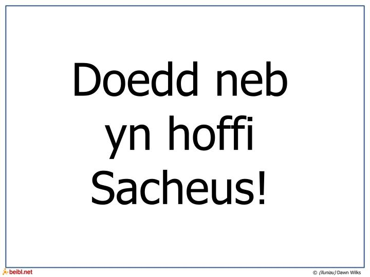 Doedd neb yn hoffi Sacheus!