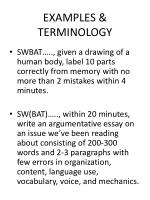 examples terminology