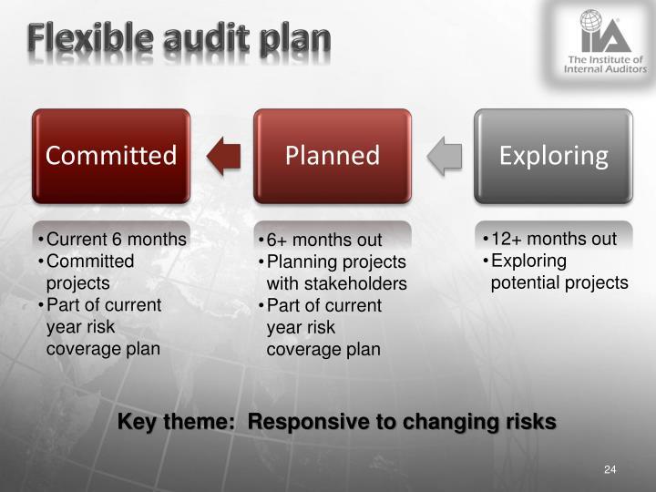 Flexible audit plan
