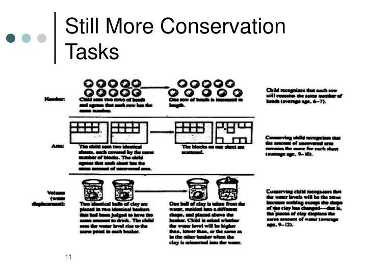 Still More Conservation Tasks