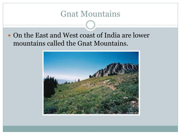 Gnat Mountains