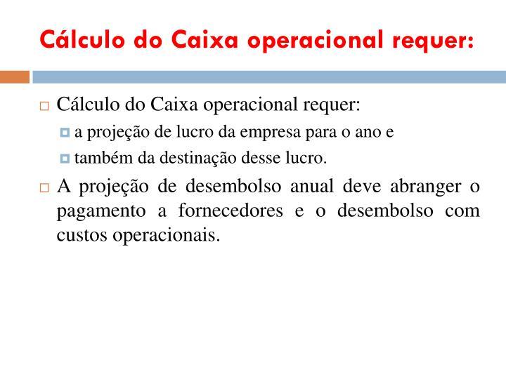 Cálculo do Caixa operacional requer