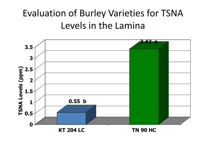 Evaluation of burley varieties for tsna levels in the lamina