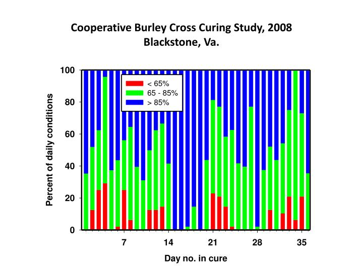 Cooperative Burley Cross Curing Study, 2008