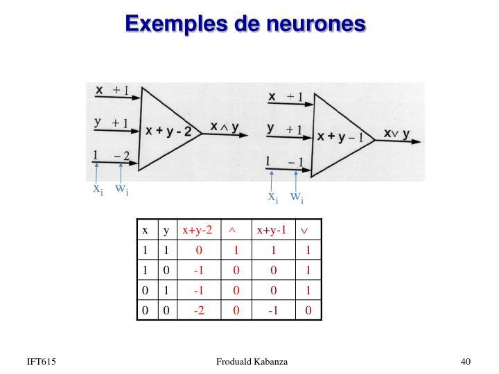 Exemples de neurones