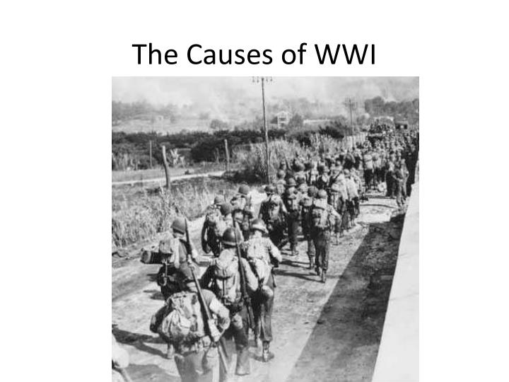 dbq 19 causes of world war 1 essays