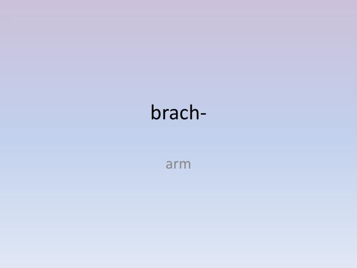 brach-