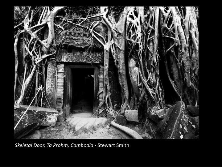 Skeletal Door, Ta