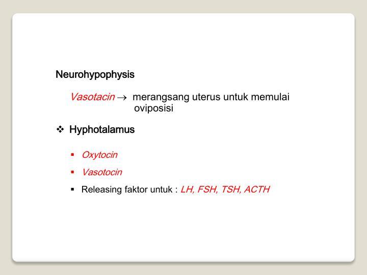 Neurohypophysis