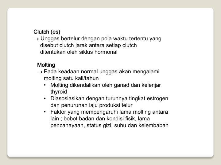 Clutch (