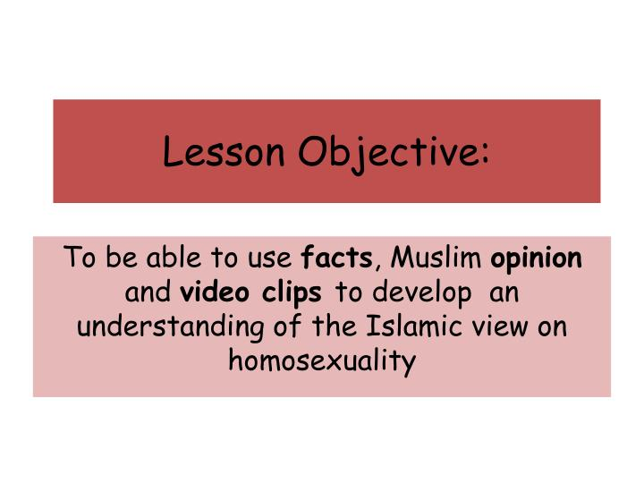 lesson objective n.