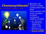 chemosynthesis