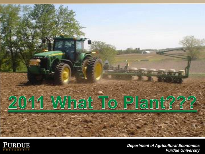 2011 What To Plant???