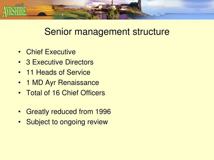 Senior management structure