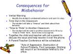 consequences for misbehavior
