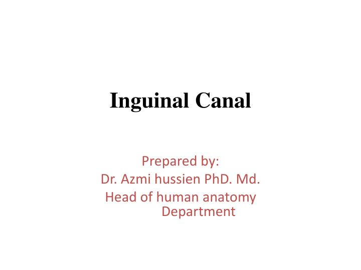 Ppt Inguinal Canal Powerpoint Presentation Id2931177