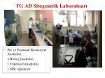 tg ad sitogenetik laboratuar