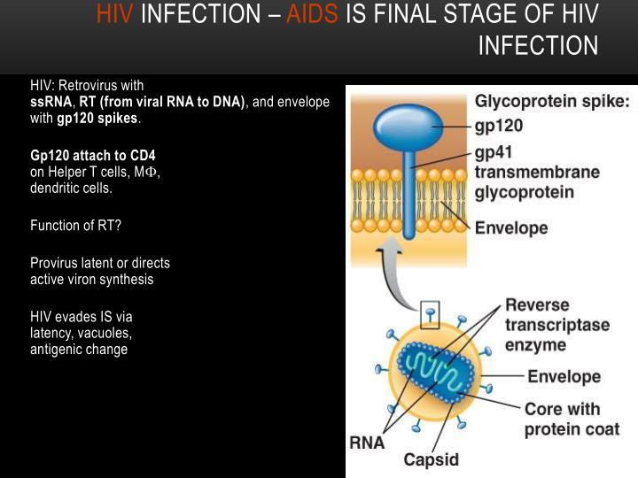 HIV: Retrovirus with