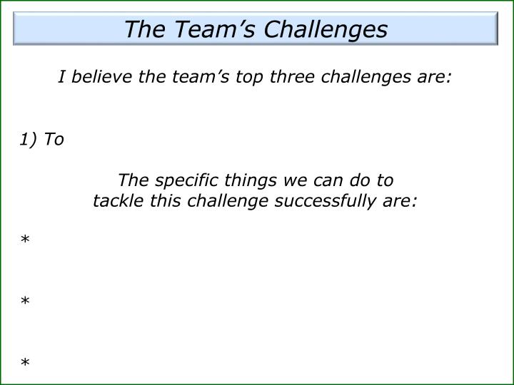 The Team's Challenges