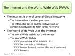 the internet and the world wide web www